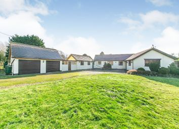 Thumbnail 3 bed detached bungalow for sale in Calais Street, Boxford, Sudbury