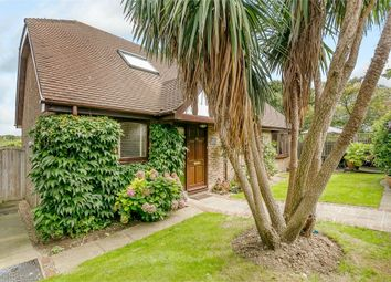 Thumbnail 3 bed detached house for sale in King Henrys Road, Lewes, East Sussex