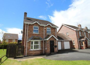 Thumbnail 4 bed detached house for sale in Lyngrove Hill, Glenavy, Crumlin