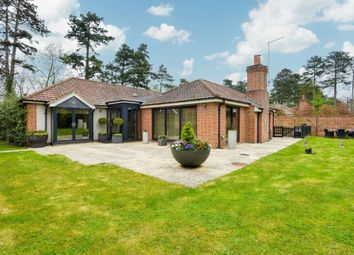 Thumbnail 4 bed bungalow for sale in Dane O Coys Road, Bishop's Stortford