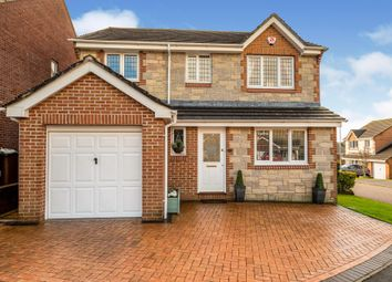 Thumbnail Detached house for sale in Upper Ridings, Plympton, Plymouth