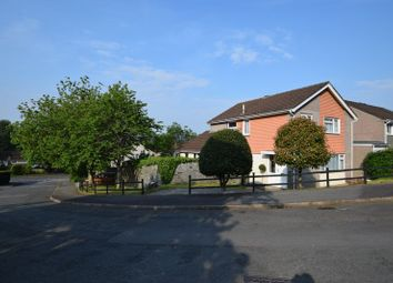 Thumbnail 4 bed detached house for sale in Maple Close, Tavistock