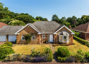 Thumbnail 4 bed detached bungalow for sale in Hook Heath, Woking, Surrey