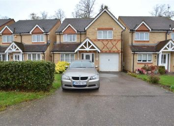 Thumbnail 4 bedroom detached house for sale in Dove Road, Stevenage, Herts