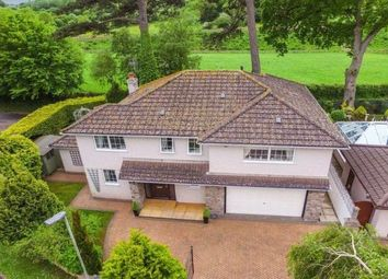 Thumbnail 4 bed detached house to rent in Greenhill Gardens, Kingskerswell, Newton Abbot