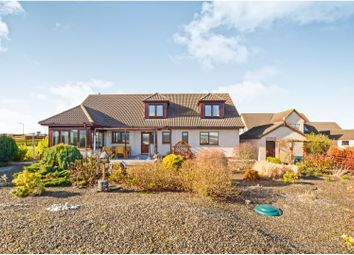 Thumbnail 6 bedroom detached bungalow for sale in Aird Place, Balblair