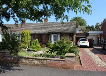 Thumbnail Semi-detached bungalow for sale in Manor Orchard, Taunton, Somerset