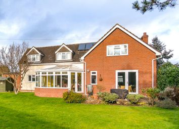 Thumbnail 4 bed detached house for sale in Darville, Shrewsbury