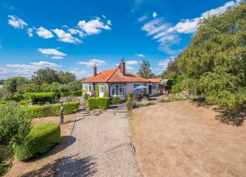 Thumbnail 3 bedroom detached bungalow for sale in Bures, Sudbury, Suffolk