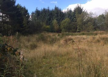Thumbnail Land for sale in Llandovery Road, Llanwrtyd Wells