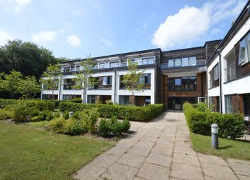 Thumbnail 2 bed property to rent in Wispers Lane, Haslemere