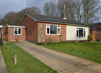 Thumbnail 3 bed detached bungalow for sale in Beechlands Road, Medstead, Alton, Hampshire