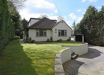 Thumbnail 4 bedroom detached bungalow for sale in Ash Lane, Burghfield Common, Reading