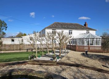 Thumbnail 8 bed farmhouse for sale in Sway Road, Tiptoe, Lymington