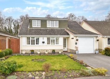 4 bed bungalow for sale in Queens Close, West Moors, Ferndown BH22