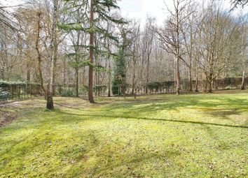 Thumbnail 4 bed detached house for sale in Bashurst Copse, Itchingfield, Horsham