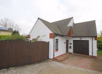Thumbnail 3 bed detached bungalow to rent in Rhosesmor Road, Halkyn, Flintshire