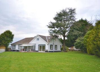 Thumbnail 6 bed detached bungalow for sale in Laugharne, Carmarthen