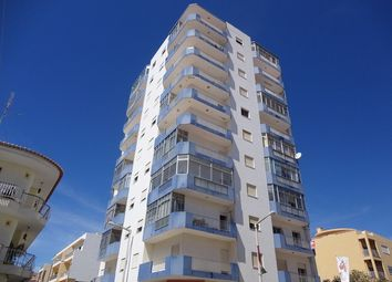Thumbnail 3 bed apartment for sale in Portugal, Algarve, São Brás De Alportel