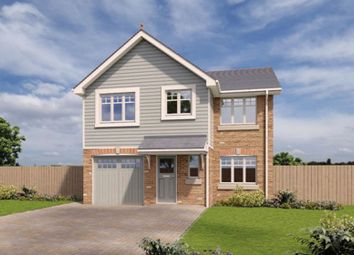 Thumbnail 4 bed detached house to rent in 122 Royal Park, Ramsey