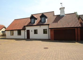 Thumbnail 4 bed detached house for sale in Drovers Rest, Kirstead, Norwich