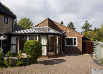 Thumbnail 2 bed detached bungalow to rent in Brookside Bar, Brookside, Chesterfield