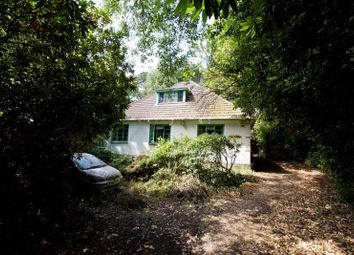 Thumbnail 3 bed bungalow for sale in Wilderton Road, Branksome Park, Poole