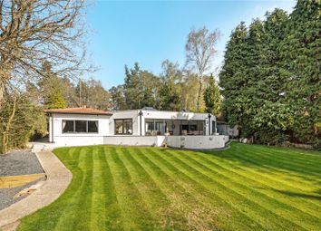 Thumbnail 4 bed detached house for sale in Hollybush Ride, Finchampstead, Wokingham, Berkshire