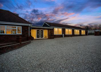 Thumbnail 5 bed detached bungalow for sale in Sheering Lower Road, Sawbridgeworth, Hertfordshire