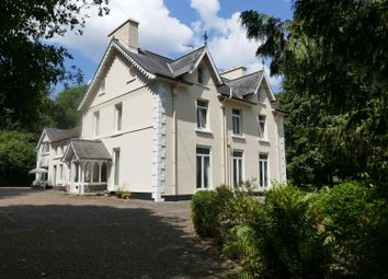 Thumbnail 9 bed detached house for sale in Rhosmaen, Llandeilo