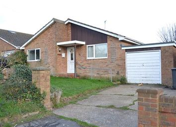 Thumbnail 3 bed detached bungalow to rent in Pine Avenue, Hastings, East Sussex