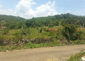 Thumbnail Land for sale in Lincoln, Manchester, Jamaica