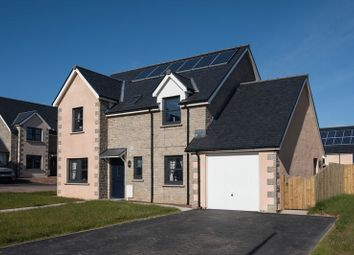 Thumbnail 4 bedroom detached house for sale in Plot 29, Peelwalls Meadows, Eyemouth