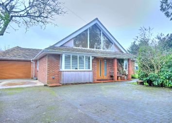Thumbnail 5 bedroom detached bungalow for sale in Ringsfield Road, Beccles
