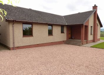 Thumbnail 4 bedroom detached bungalow for sale in East Inchmichael Farm, Errol