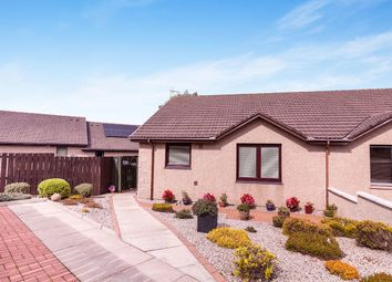 Thumbnail 2 bed bungalow for sale in Scotston Place, St. Cyrus, Montrose