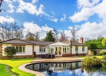 Thumbnail 4 bed detached bungalow for sale in Water Lane, South Godstone, Godstone