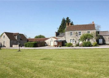 Thumbnail Land to rent in Ditcheat, Shepton Mallet, Somerset