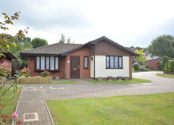 Thumbnail 2 bed detached bungalow to rent in Oakmead Green, Epsom