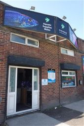 Thumbnail Retail premises for sale in Independent Aquatic Retail Store + Website SA5, Fforestfach, Swansea