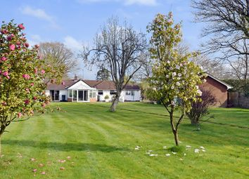 Thumbnail 4 bed detached bungalow for sale in Ringwood Road, Three Legged Cross, Wimborne