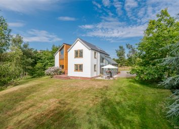 Thumbnail 4 bed detached house for sale in Ratlinghope, Shrewsbury