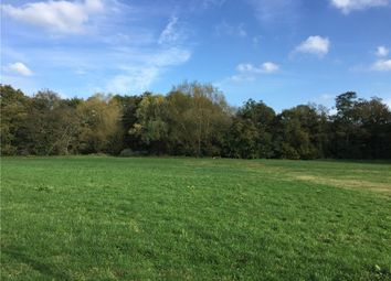 Thumbnail Land for sale in Newton Road, Stoford, Yeovil, Somerset