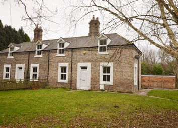 Thumbnail 3 bed semi-detached house to rent in Ovingham, Prudhoe