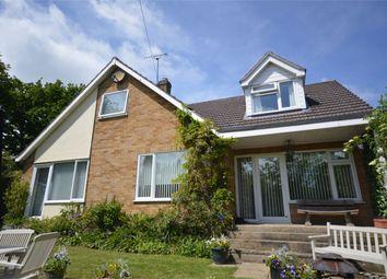 Thumbnail 3 bed detached house for sale in Bonds Road, Hemblington, Norwich, Norfolk