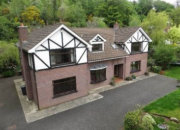 Thumbnail 5 bed detached house for sale in Greenan Road, Newry