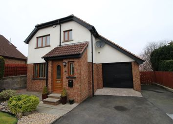 Thumbnail 3 bed detached house for sale in Old Mill Heights, Culcavy, Hillsborough