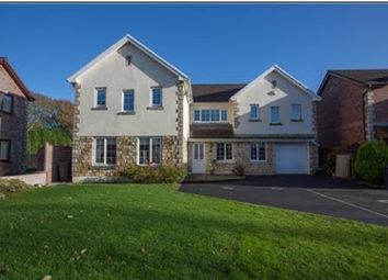 Thumbnail 5 bedroom detached house for sale in Ocean View, Jersey Marine, Neath