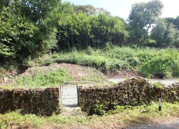 Thumbnail Farmhouse for sale in Plot 2, Well Cottage, Liddeston Road, Havens Head