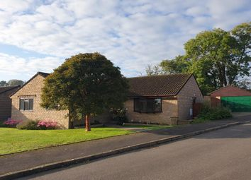 Thumbnail 3 bed detached bungalow for sale in Aspen Way, Crewkerne